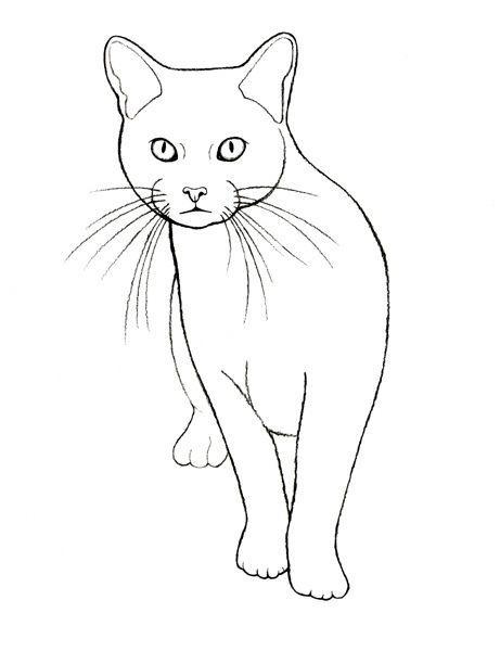 Idee Tatouage Disegni Di Gatti Tatuaggi Gattino E Ricamo Gatto