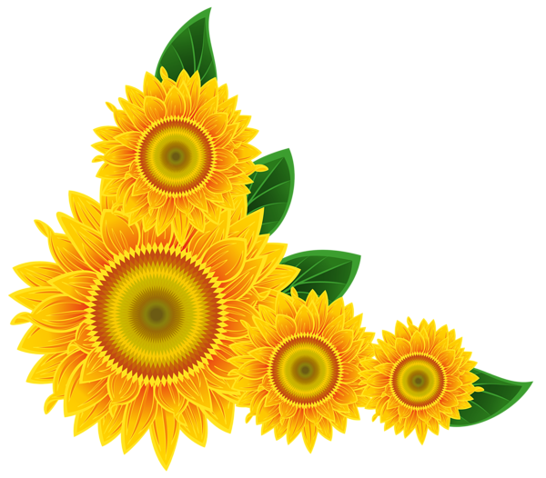 sunflower corner decoration png clipart image boarders corners rh pinterest com au