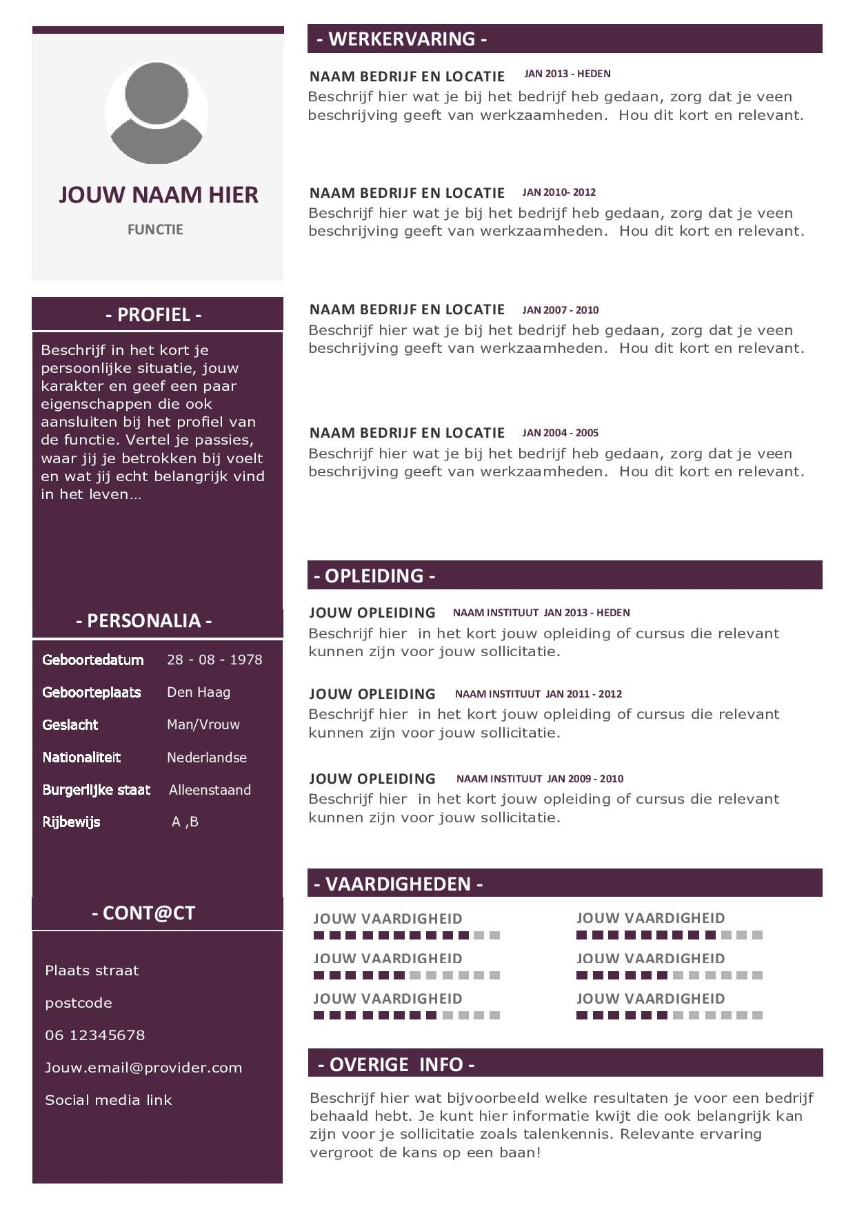 Modern CV Template 2019 Cv sjabloon, Cv ontwerp, Template
