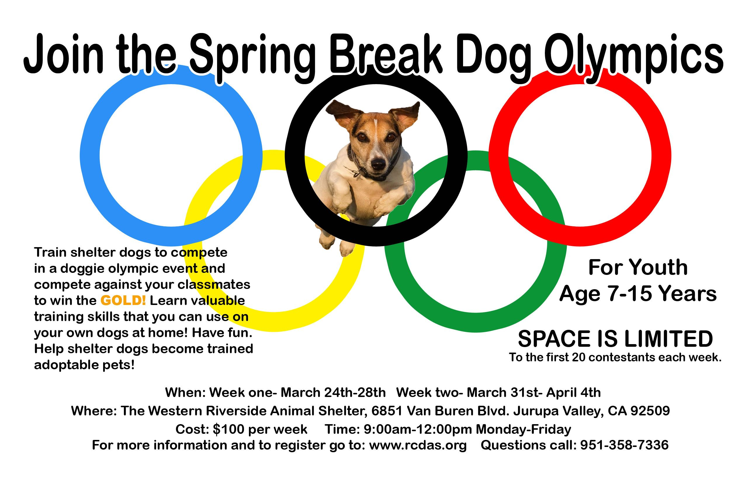 Spring Break Dog Olympics Springbreak Dogs Wearehiring Nowhiring Riversidecalifornia Iloveriverside Riverside County Riverside Spring Break