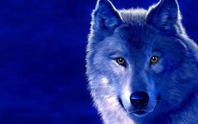 download wallpapers painted wolf neon wolf predator wolf other