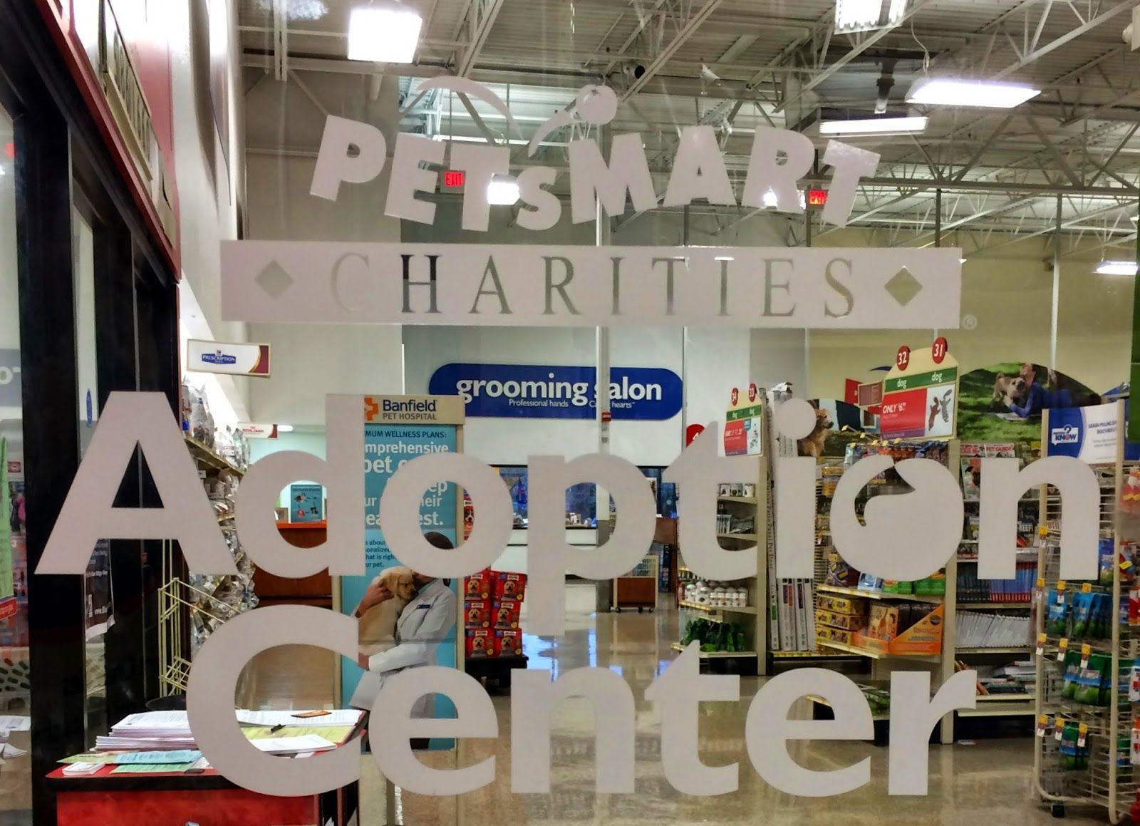 It S A Win Win Times Infinity With Images Cat Shelter Petsmart Rescue Stories
