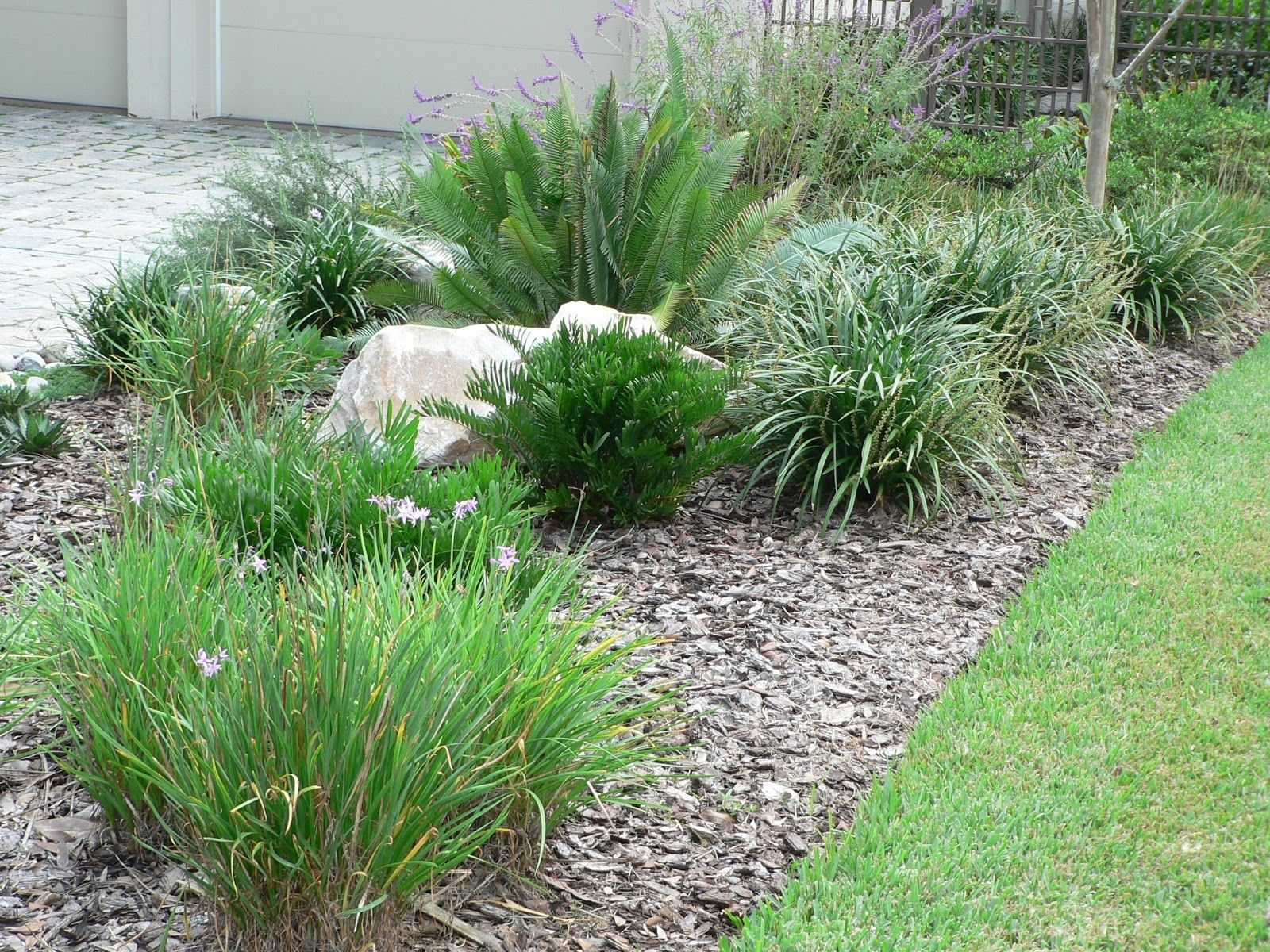 low maintenance landscaping florida design and ideas