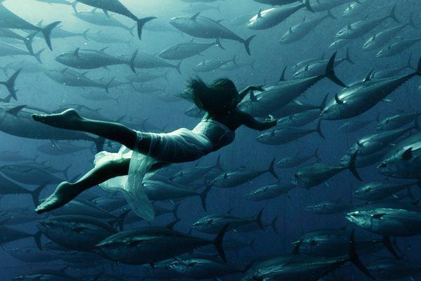 Photo Kuar Arrigo Model Saho Harada Fish Swimming Swimming Underwater