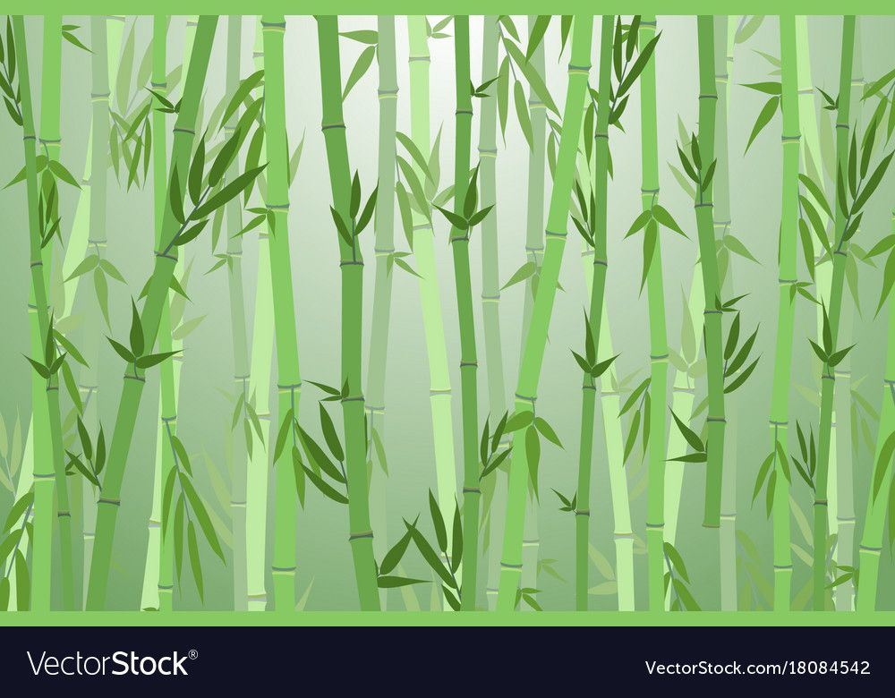 Cartoon Bamboo Forest Landscape Background Vector Image On