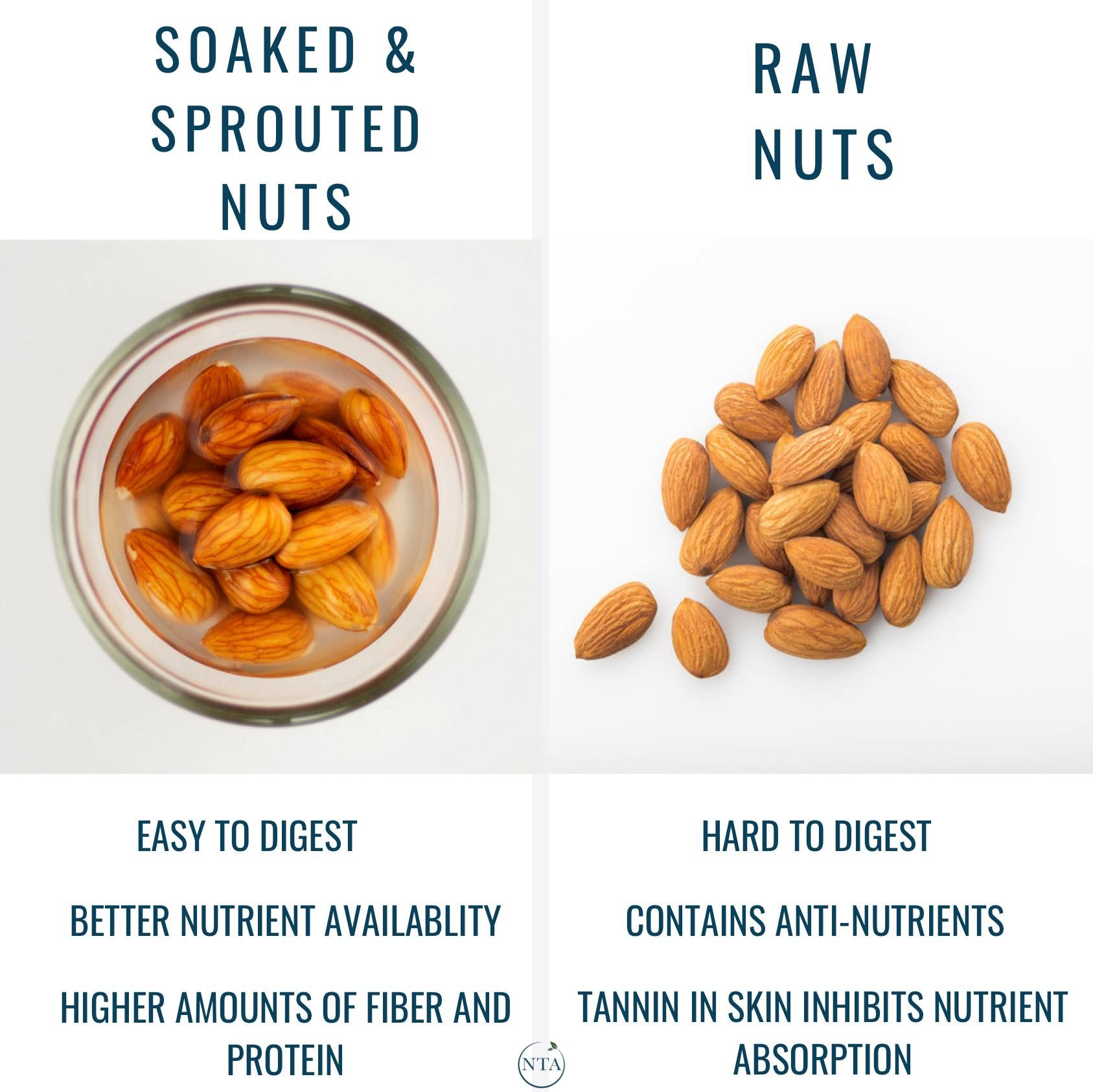 Soaked Sprouted Nuts Vs Raw Nutrition Nutritional Therapy Nutritional Therapy Association