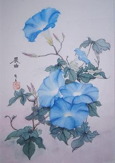 12e6812b7c9eb807fe957cd80196ad57 Jpg 236 335 Morning Glory Tattoo Flower Drawing Drawings