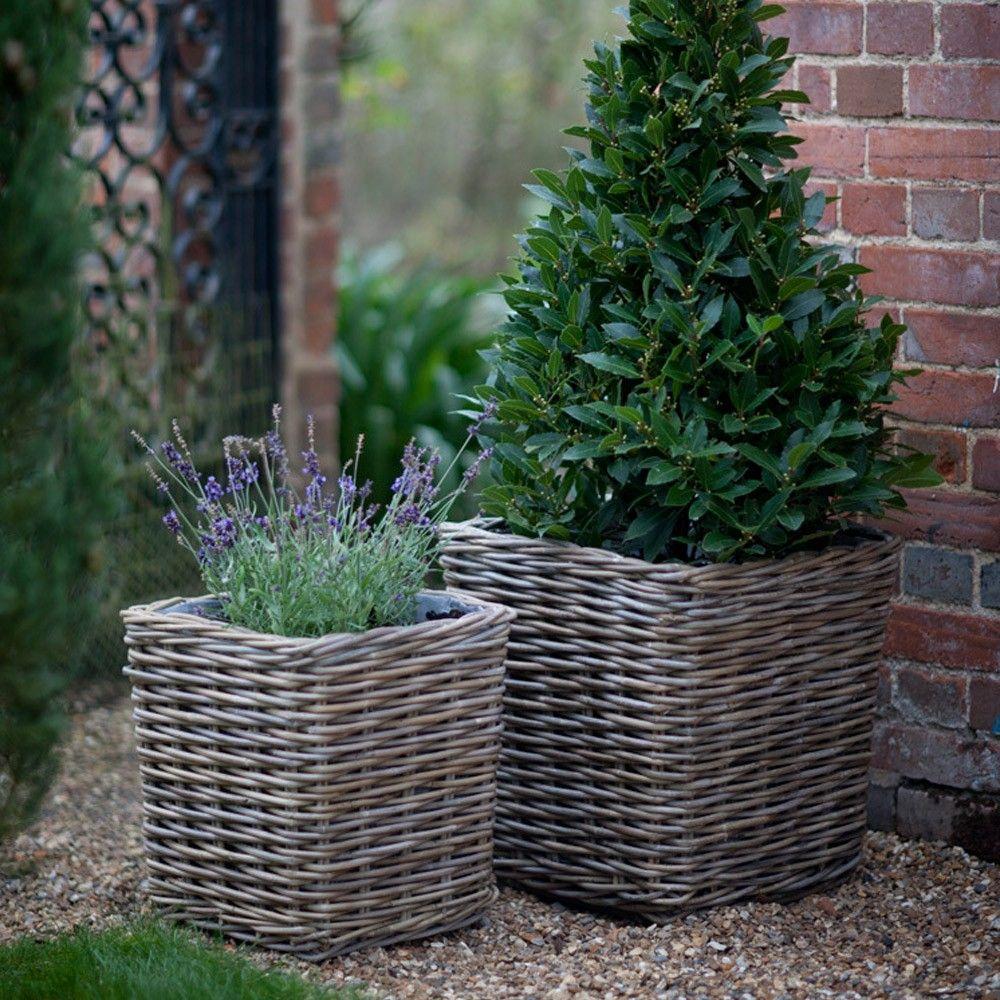 Körbe bepflanzt mit Lavendel und Lorbeer | Terasse ...