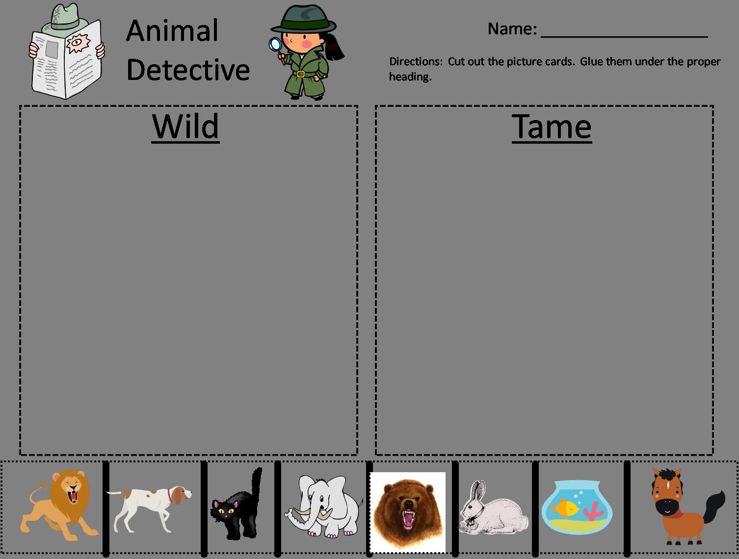 School Happenings Wild Animals Vs Tame Animals Tame Animals Animals Wild Kindergarten Sorting Activities [ 1140 x 1506 Pixel ]