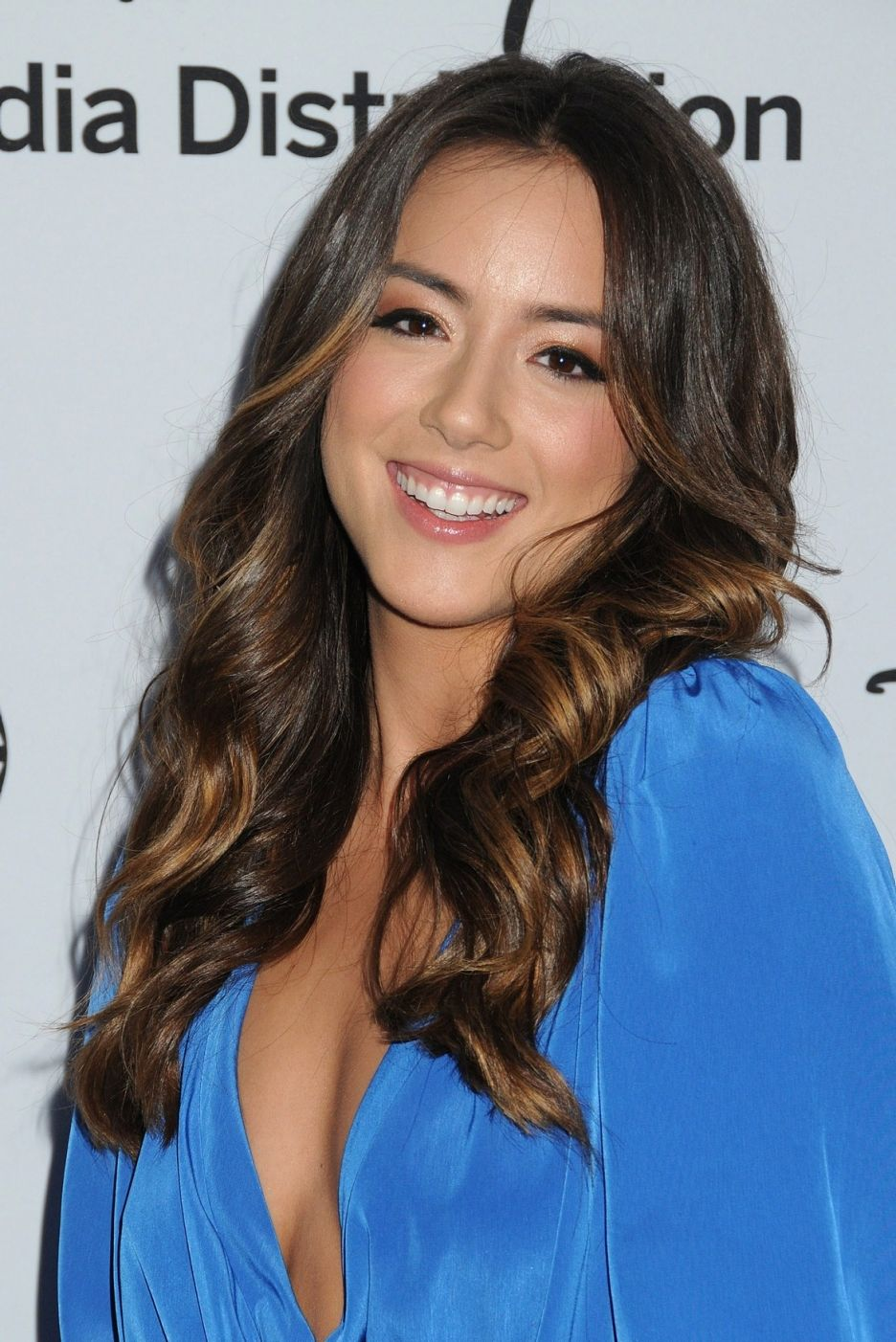 Chloe Bennet earned a  million dollar salary, leaving the net worth at 2 million in 2017