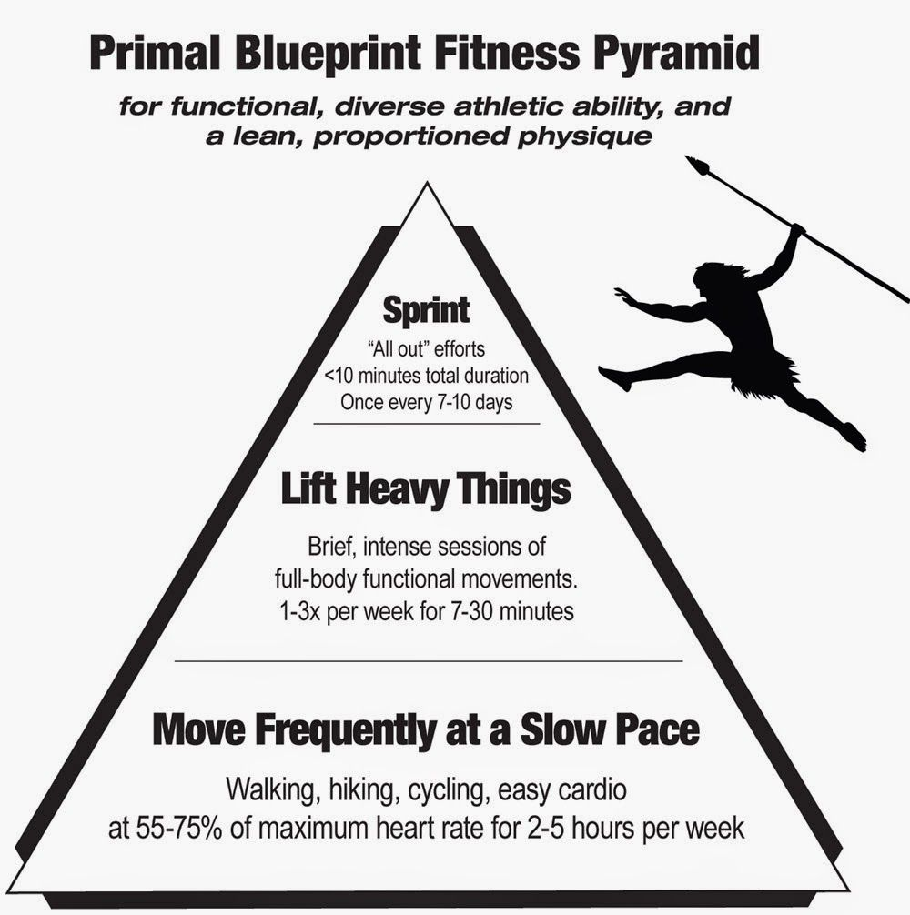 My take on the primal blueprint certification paleo stuff just recently i had the privilege of officially completing mark sissons primal blueprint certification course because i am still battling the effects of malvernweather Images
