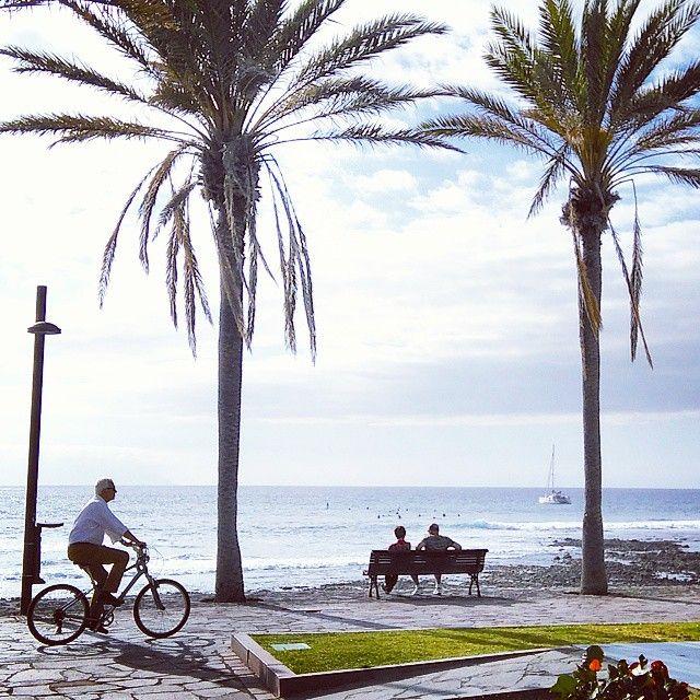 Lazy afternoon in Playa de las Américas.  #playadelasamericas #surf #palm #paradise #tenerife #tenerifesur #ig_tenerife