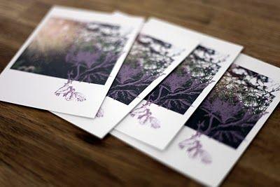 alanakdavis.blogspot.com: Lavender Postcards