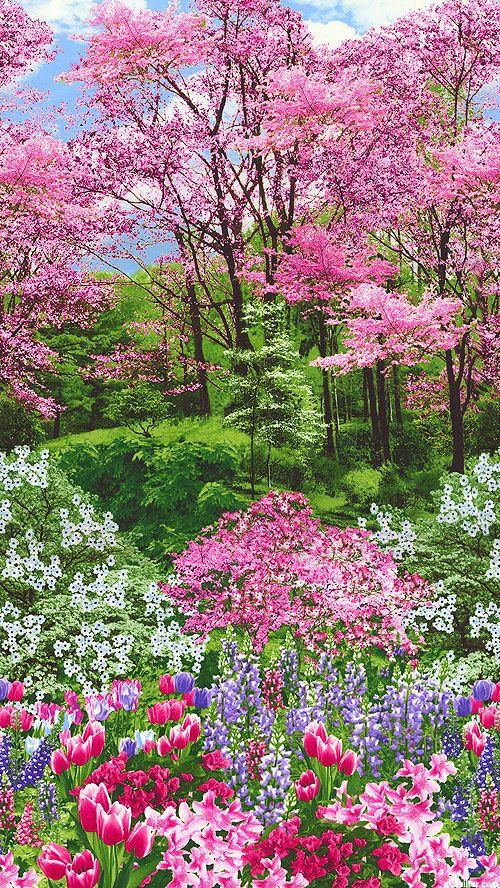 Equilter Botanic Garden Spring Blossom Border Multi Spring Nature Spring Landscape Flowering Trees