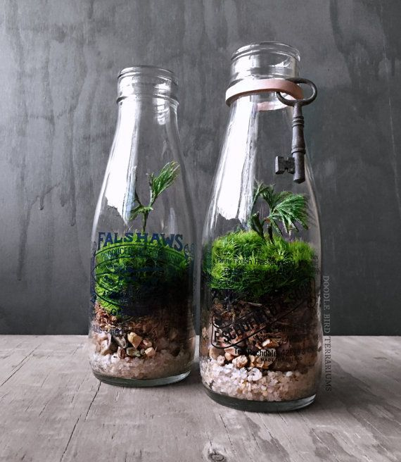 Beautiful Bottle Gardens That Will Make You Beam Wine Bottles