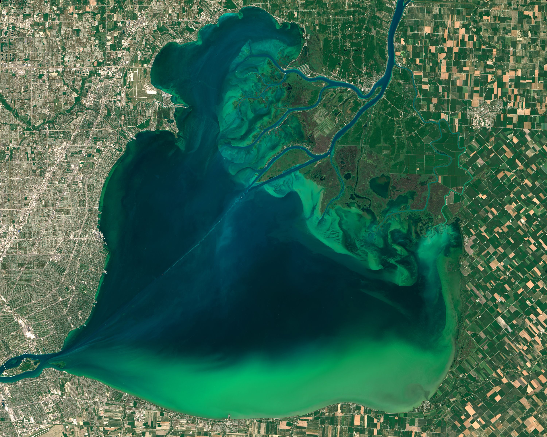 Algae Bloom in Lake St Clair The Lake