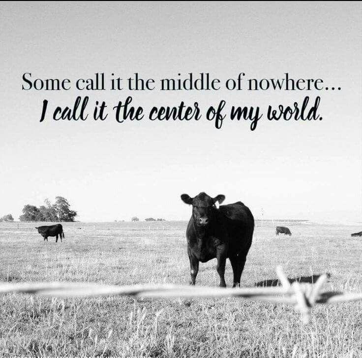 Farming Quotes: FFA (Funny Farm Animals)