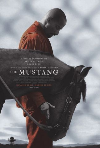 The Mustang (2019) - Rotten Tomatoes | Movies Spring 2019 in