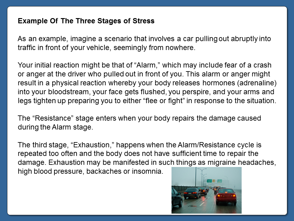 Example Of The Three Stages Of Stress Module 3 Stage Stress