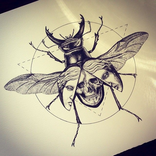 Death Beetle Scarab Cicada Insect Original Art Artwork Poster Print 11x17 inches