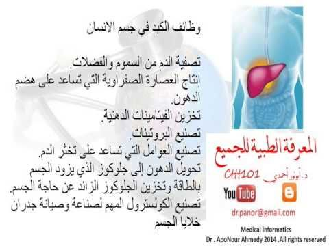 وظائف الكبد داخل جسم الانسان Http Youtu Be Vyvkqfqi3hc Pill Medical Convenience Store Products