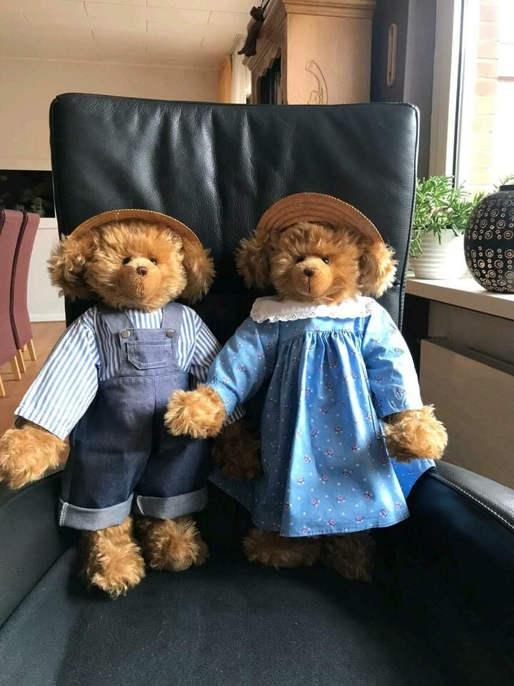 Teddybär Paar in NordrheinWestfalen Krefeld