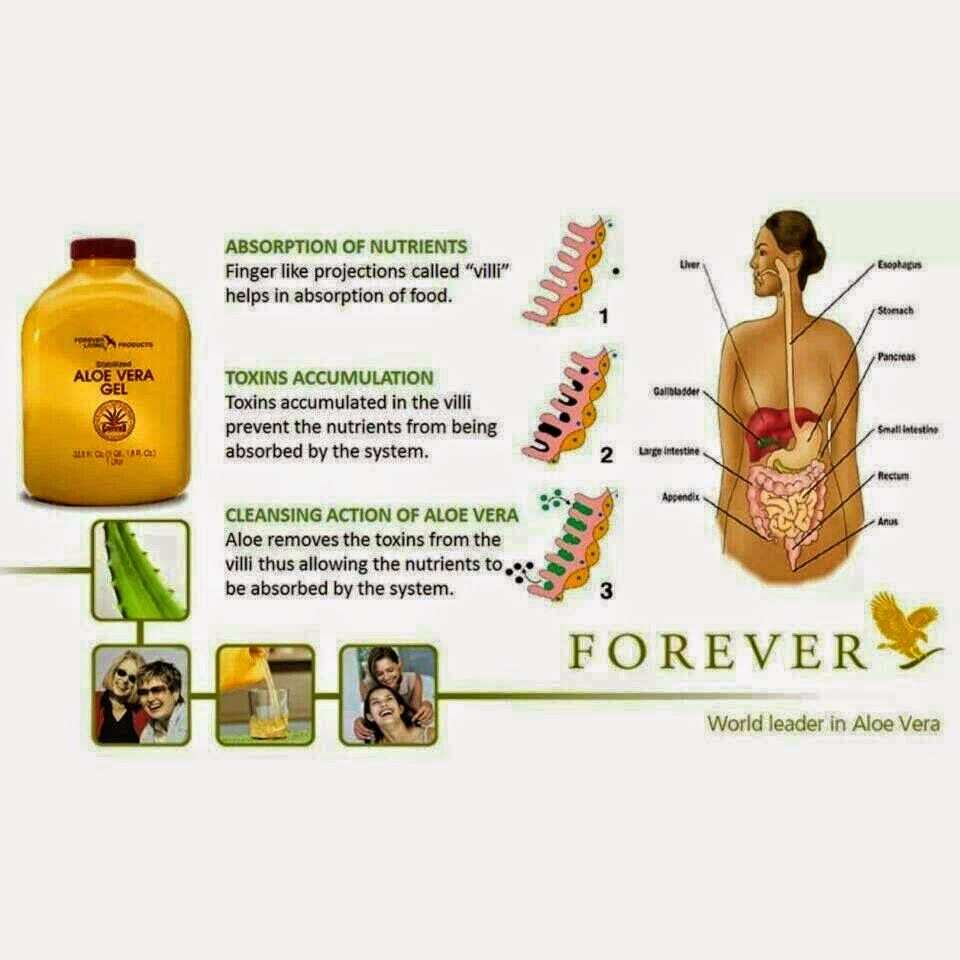 Get Some Direction Of Given Products Forever Living Business