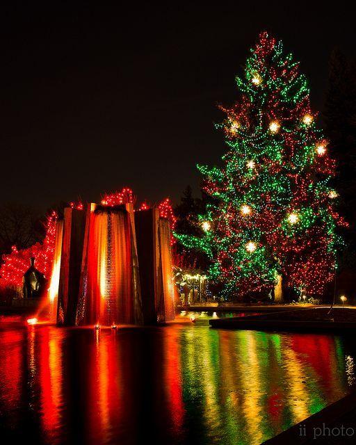 Colorado Springs Christmas 2019.Holiday Reflection Denver Activities In 2019 Denver