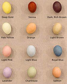 Natural egg dye using red cabbage, turmeric, onion skins, beets, and coffee from Martha Stewart
