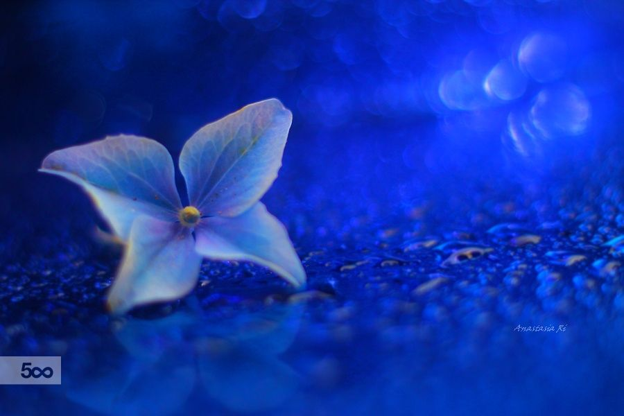 some new blue seemingly is seen by Anastasia Ri on 500px