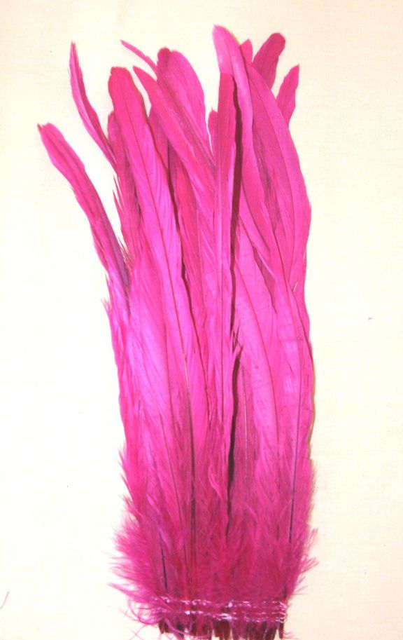 """Beautiful 12-14"""" long rooster tail feathers which have been bleached & dyed pink.  Pack of 25 for $13.95 Strung with double row of stitching at bottom of quills. #roosterfeathers #pinkfeathers #feathers #roostertailfeathers #pink"""