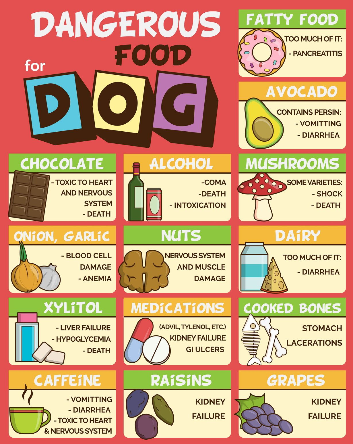 Foods That Are Dangerous And Harmful To Dogs Food Dogs Cant Eat