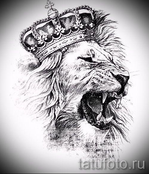 звезды со знаком льва