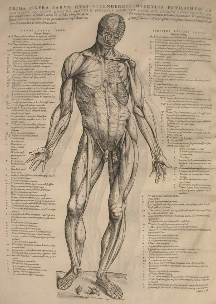 Inside the Morbidly Fascinating Autopsy Handbook that Changed ...