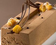 Bûche glacée au chocolat et à la mangue
