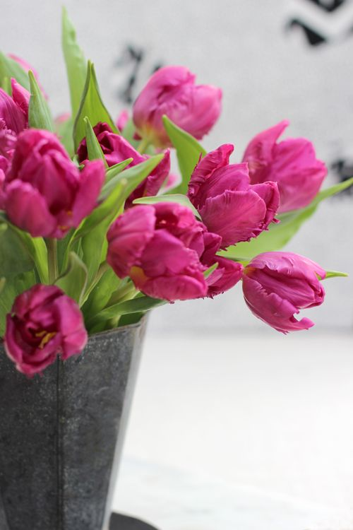 A Bunch for the Weekend-# 34-Pink Tulips in Zinc Vase-Ingrid ... on zinc metal, zinc desk, zinc patina, zinc car, zinc basket, zinc chest, zinc dog, zinc table,