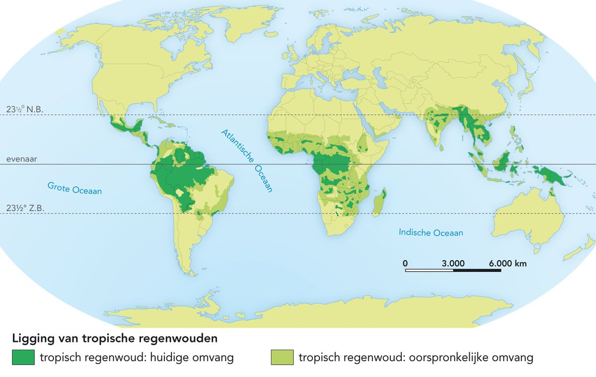 Kaart Ligging Van Tropische Regenwouden School Map