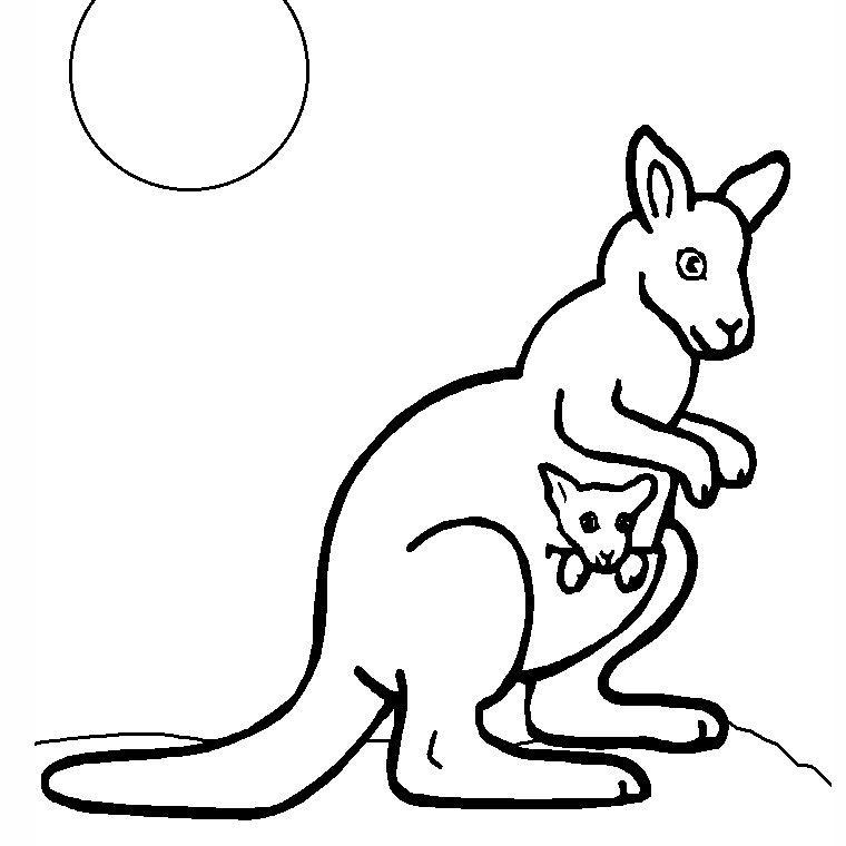 Coloriage Kangourou.Animaux Australie Coloriage Australie Enfant Coloriage
