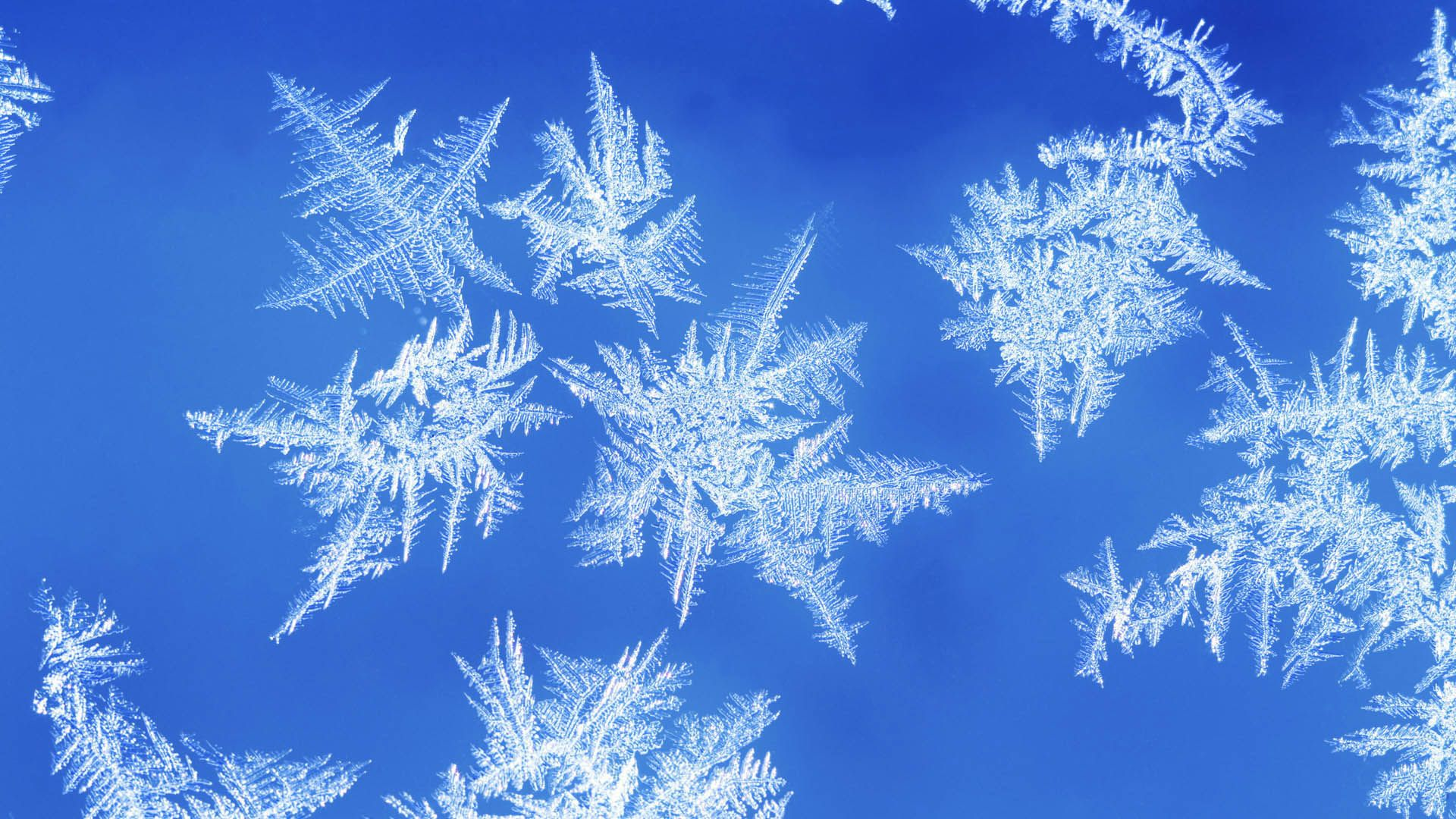 Snowflakes hd wallpapers high definition wallpapers hd snowflakes hd wallpapers voltagebd Choice Image
