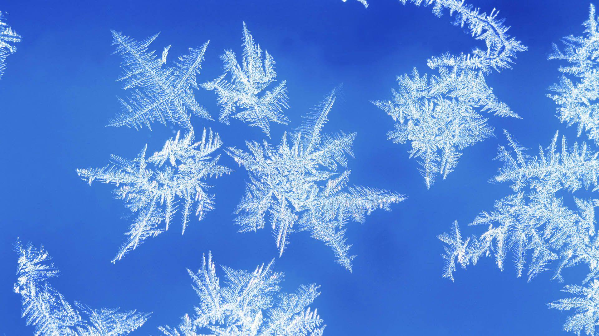 snowflakes hd wallpapers Flocos de neve, Neve, 1080p