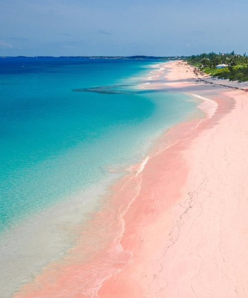 Best 25 pink island ideas on pinterest pink sand beach for Bahamas pink sand beaches