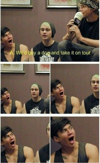 That is pure genuine happiness on Calum's face. Please get this kid a dog.>>>> HAVE WE FORGOTTEN ABOUT KETCHUP?!?!