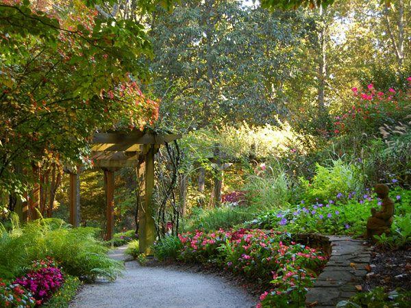 Green magic is a very beautiful backyard gardening idea for Garden design ideas vancouver
