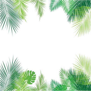 Tropical Palm Leaves Png Png Free Download Palm Tropical Leaves Leaves Png And Vector With Transparent Background For Free Download Tropical Background Leaf Border Tropical Leaves