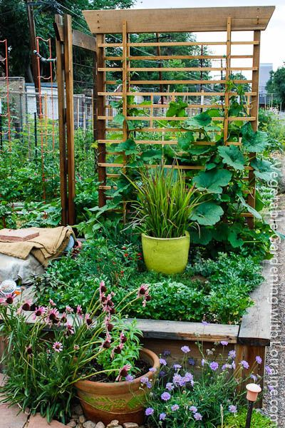 Beautiful Use Of Space In The Small Vegetable Garden