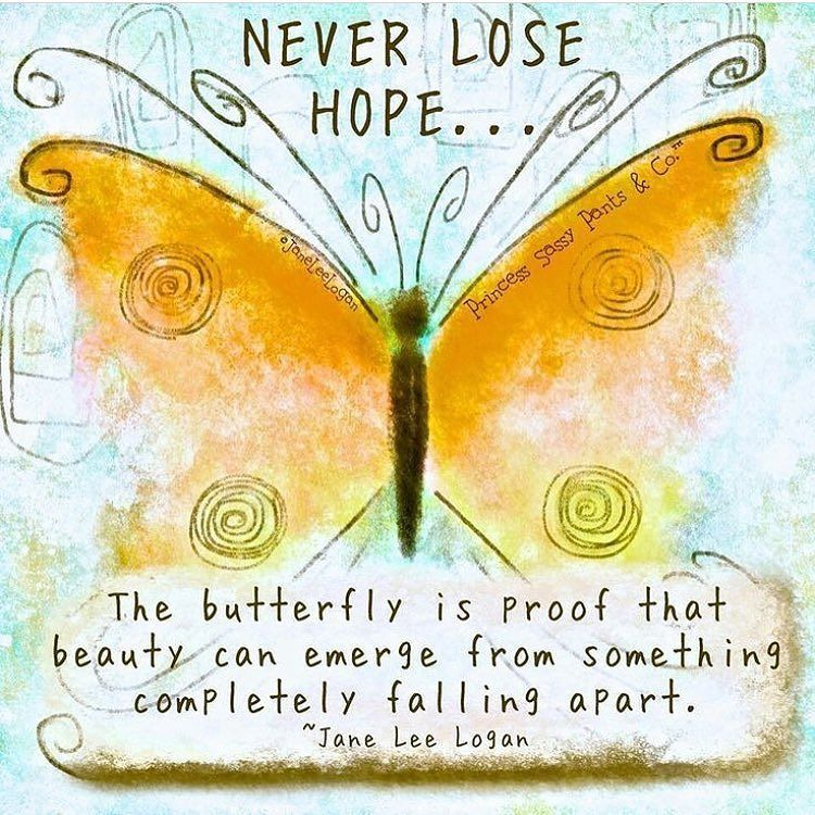 Nevergiveup Wewillbevictorious Keeponkeepingon Hopespringseternal Mg Tutucbk Butterfly Quotes Hope Quotes Inspirational Quotes