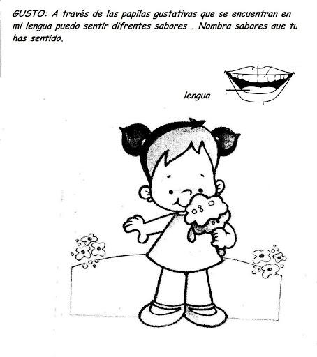 Sentido Del Olfato Para Ninos De 5 Anos Para Colorear Busqueda De Google Activities Educational Activities Preschool