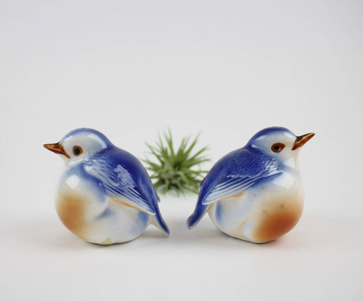 Fantastical Bird Salt And Pepper Shakers. Vintage Ceramic Red Bellied Robin Salt and Pepper Shakers  Bone China Round Birds Chubby Bird Figurines