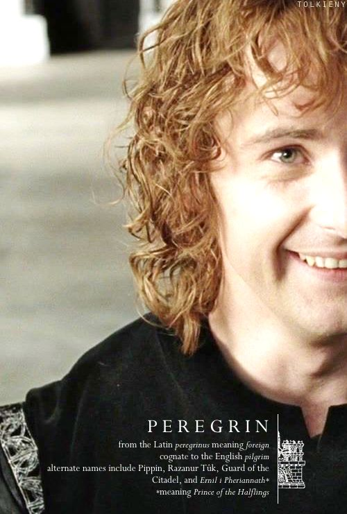 tolkieny:  the meaning of pippin  for cirithungols and hotdadthranduil