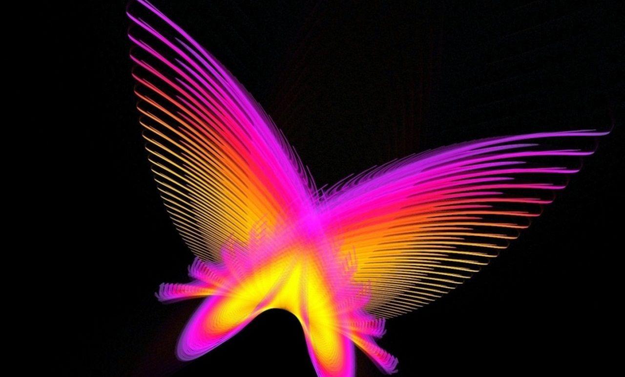 Neon Butterfly Desktop Background: Neon Butterfly Wallpapers